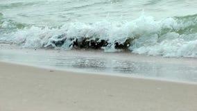 Onda del arena de mar almacen de video