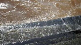 Onda del fiume che lancia la scala crescente del muschio concreto video d archivio