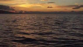 Onda del mare nei raggi del sole video d archivio