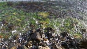 Onda del mare sulle pietre e sull'alga stock footage
