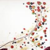 Onda del rizo de las frutas y de los cereales Fotografía de archivo libre de regalías