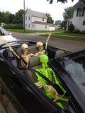 Onda dell'automobile degli scheletri con il cane immagine stock
