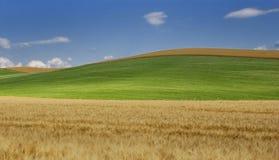 Onda della Toscana Fotografie Stock