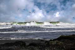 Onda di marea Fotografia Stock Libera da Diritti