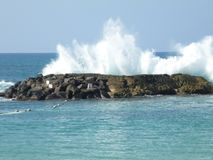 Onda di oceano hawaiana Immagini Stock Libere da Diritti