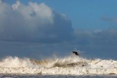 Onda di oceano praticante il surfing Fotografia Stock Libera da Diritti