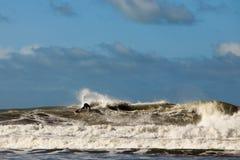 Onda di oceano praticante il surfing Fotografie Stock
