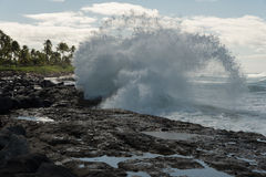 Onda di rottura su Oahu, Hawai Fotografie Stock