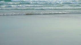 Onda do mar do movimento lento na praia em Tailândia vídeos de arquivo