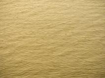 Onda dorata del fiume Fotografia Stock