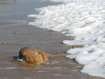 Onda e pedra na praia Imagens de Stock Royalty Free