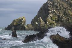 Onda e penhascos de oceano Fotografia de Stock Royalty Free