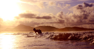 Onda e praticare il surfing Immagini Stock Libere da Diritti