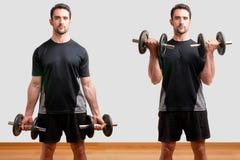 Onda ereta do peso do bíceps fotos de stock