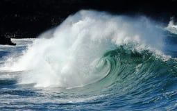 Onda grande de la bahía de Waimea Imagen de archivo libre de regalías