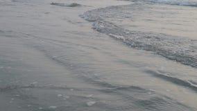 Onda molle dell'oceano blu sulla spiaggia sabbiosa 4K stock footage
