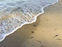 Onda na praia Fotos de Stock