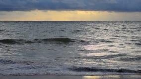 Onda na praia durante o por do sol nas horas de verão video estoque
