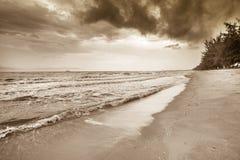 Onda no tom do Sepia da praia da areia fotografia de stock royalty free