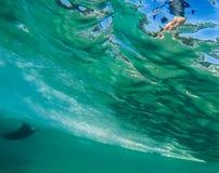 Onda que practica surf 7 imagen de archivo libre de regalías