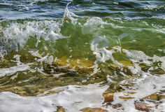 Onda que se estrella transparente costera del mar/del océano con espuma en su top imagen de archivo