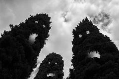 Onda träd Arkivbild