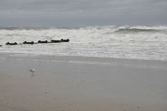 Ondas ásperas que quebram na praia Fotos de Stock Royalty Free