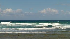 Ondas com as vieiras neve-brancas que correm através do mar fotografia de stock royalty free