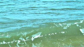 Ondas da praia de Florida Foto de Stock Royalty Free