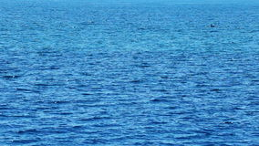 Ondas dando laços do mar video estoque
