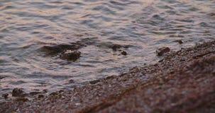 Ondas de água do mar e costa de mar filme