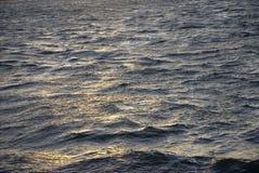 Ondas de agua Fotografía de archivo