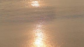 Ondas de agua fondo y arena en la playa durante la puesta del sol, cierre para arriba Sri Lanka almacen de video