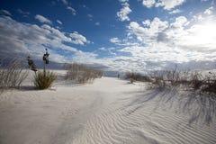 Ondas de areia e monumento nacional das areias brancas dos testes padrões foto de stock