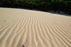 Ondas de areia tropicais Fotografia de Stock Royalty Free
