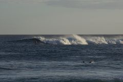 Ondas de Havaí Fotografia de Stock