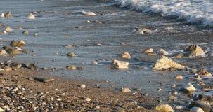 Ondas de la mañana en la playa almacen de video
