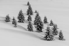 Ondas de la nieve Fotos de archivo