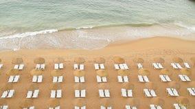 Ondas de la playa almacen de video