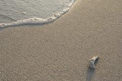 Ondas de la playa que brillan intensamente en la mañana fotografía de archivo libre de regalías