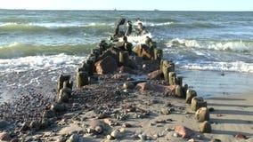 Ondas de la rotura del mar Báltico en un rompeolas de madera viejo almacen de metraje de vídeo