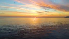 Ondas de la salida del sol y de la ondulación del mar, opinión aérea hermosa del abejón metrajes