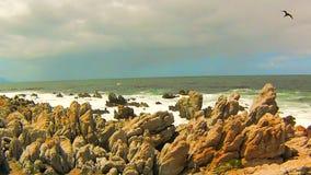 Ondas de océano en las rocas metrajes
