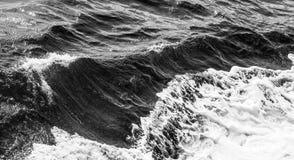 Ondas de oceano Imagem de Stock Royalty Free