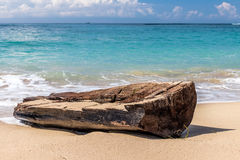 Ondas de oceano contra o fazer logon uma praia tropical da ilha mágica de Bali, Indonésia fotos de stock