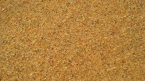 Ondas de oceano na areia em Kapaa na ilha de Kauai, Havaí Imagens de Stock