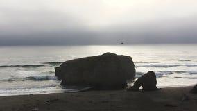 Ondas de oceano na praia de Califórnia do norte com vista distante do zangão video estoque