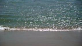 Ondas de oceano na praia filme