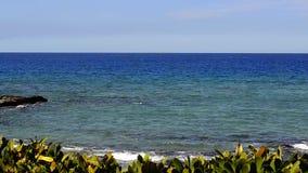 Ondas de oceano nas rochas vídeos de arquivo