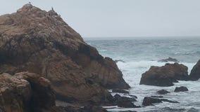 Ondas de oceano que espirram em Pebble Beach filme